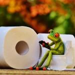 トイレトレーニング!おすすめの補助便座は?ステップは必要?